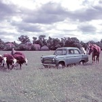 1953 The Ford Anglia never mind the horse power its beefy enough